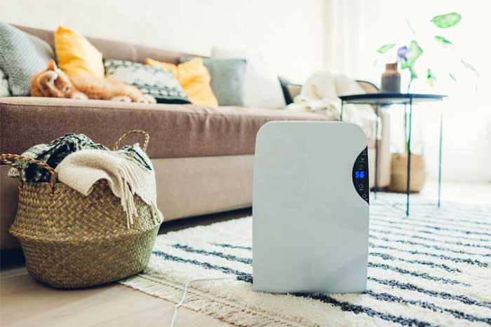 When to use Humidifier and Dehumidifier